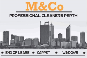 House cleaning South Perth