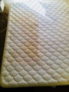 Mattress Cleaning urine
