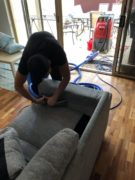 Couch Cleaning Pet Urine