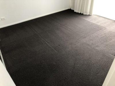#1 Carpet Steam Cleaning