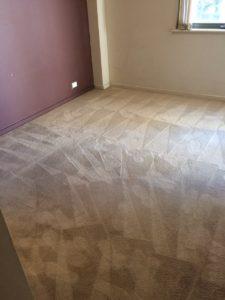 Attadale Carpet Restoration M&Co