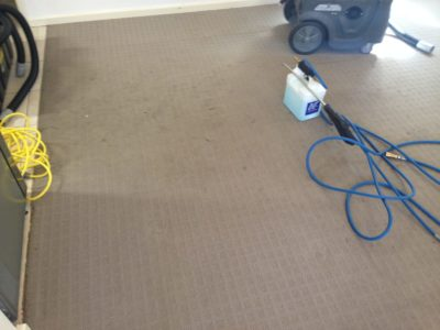 M&Co Carpet Odour Cleaning Attadale