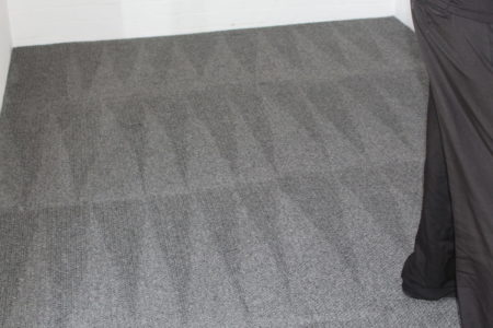 Professional Carpet Cleaners Attadale