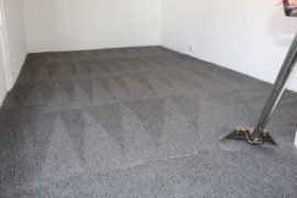 Fresh For Longer Periodic Carpet Cleaning Dalkeith