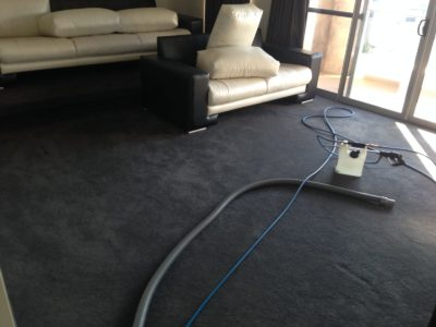 St James Emergency Carpet Cleaning M&Co