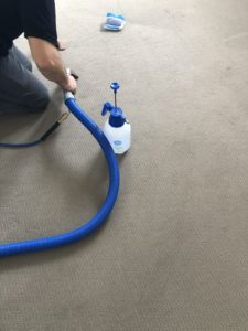 Carpet Cleaning Palmyra and Surroundings