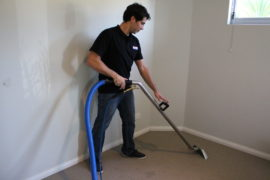 Perth region Carpet Cleaning Specialist
