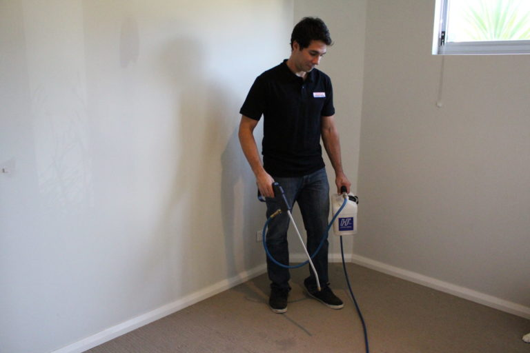 Carpet Cleaning In Perth spray stain