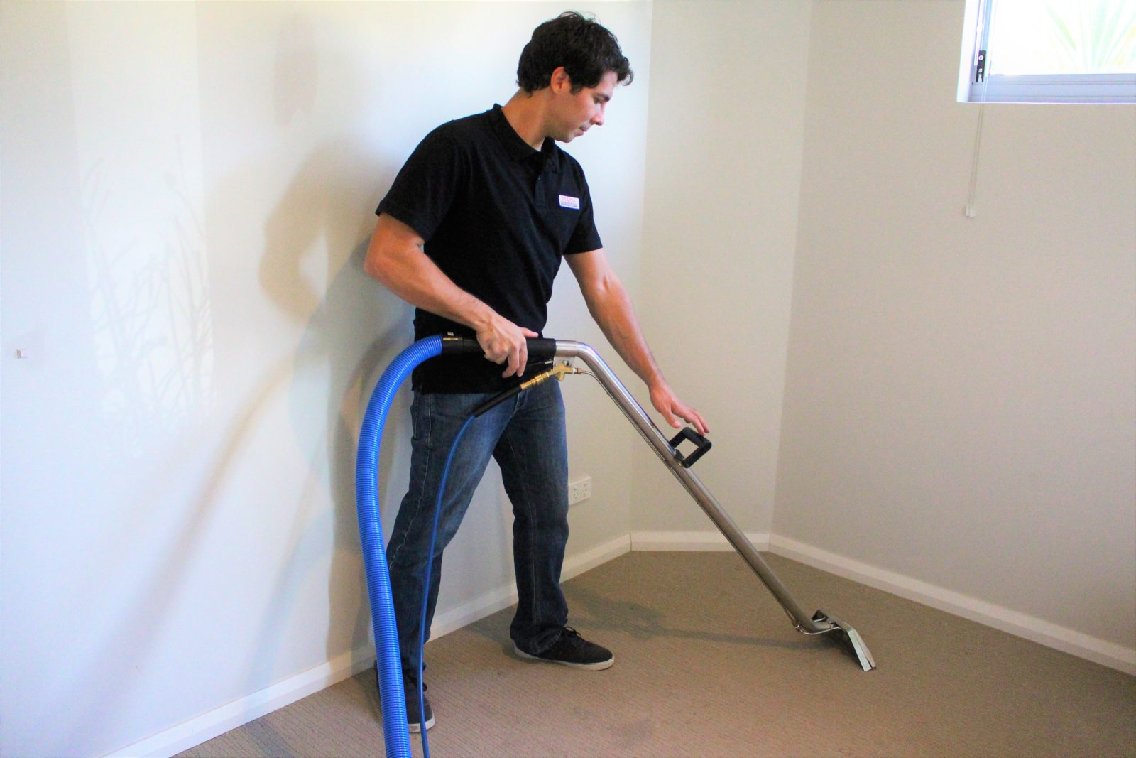 Carpet Cleaning Melbourne M Amp Co Your Carpet Cleaner 100