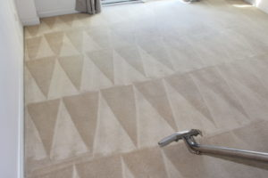 Carpet Cleaning Leerdville