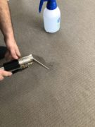 Carpet Cleaning M&Co Top Quality technician Perth