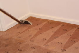 Perth M&Co Carpet Bond Cleaning Manning